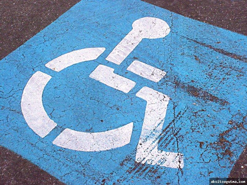 Hareket Engelli Yolcuların Aracı giriş-çıkışlarını Kolaylaştıran Teknik Donanımla İlgili Şartlar